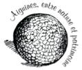 Bouloe Logo